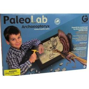 PALEOLAB ARCHAEOPTERYX