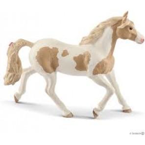 GIUMENTA PAINT HORSE